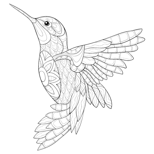 We Can T Wait To See What You Do With Today S Pigmentdailydownload Pigmentapp Coloring Bird Coloring Pages Animal Coloring Pages Mandala Coloring Pages