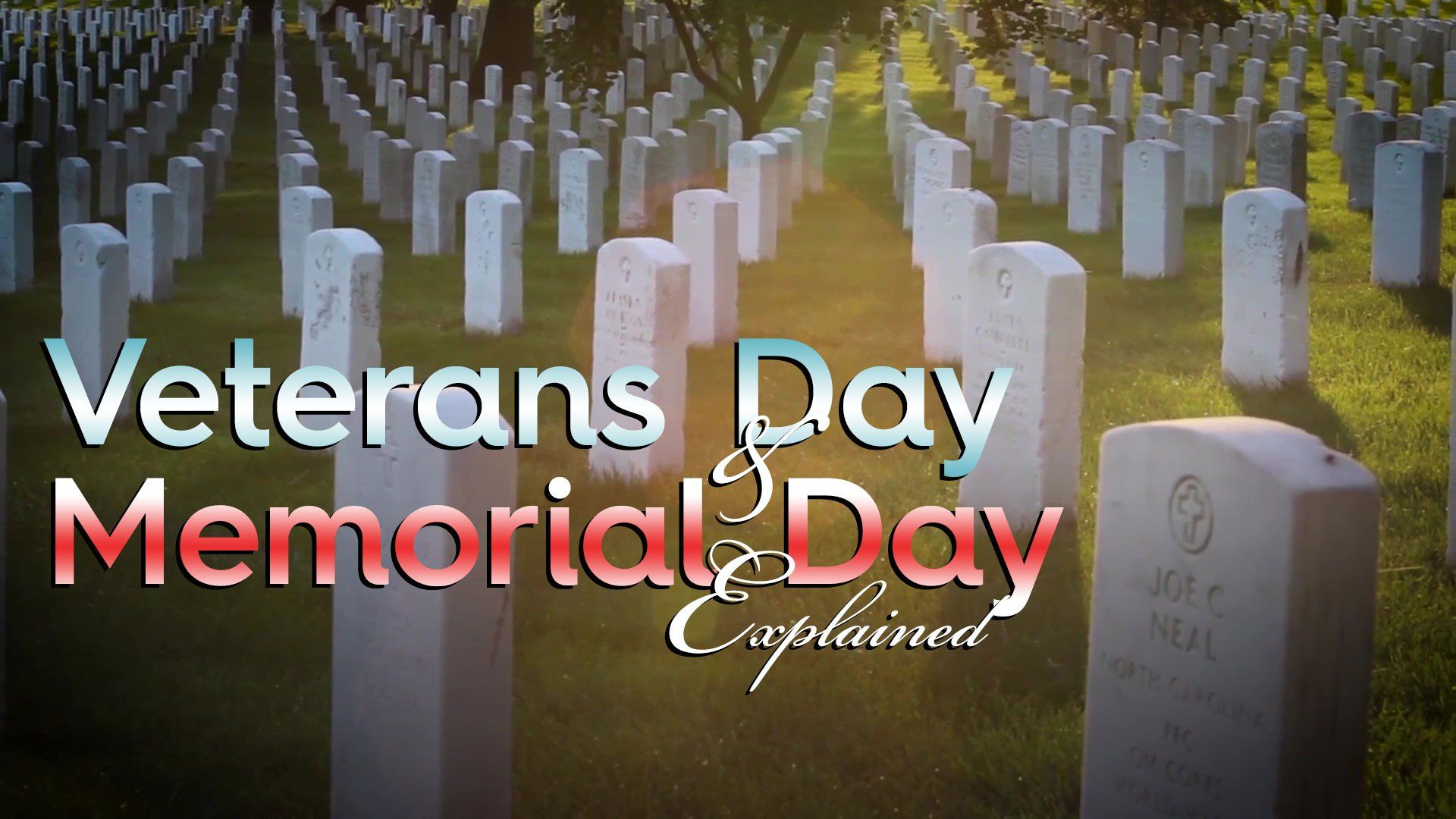 Veterans Day and Memorial Day Explained - USA Flag Co ...
