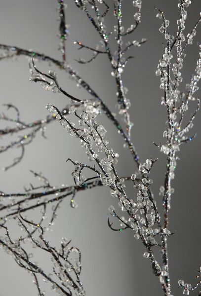 Make Iced Branches Tree Branches Aleenes Tacky Glue Colorfill