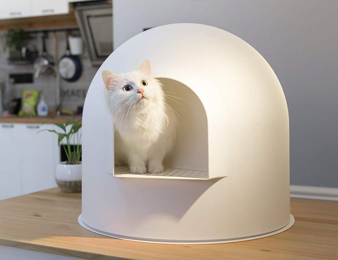 Pidan Snow House Igloo Cat Litter Box Cat Litter Box Cat Training Litter Box Litter Box