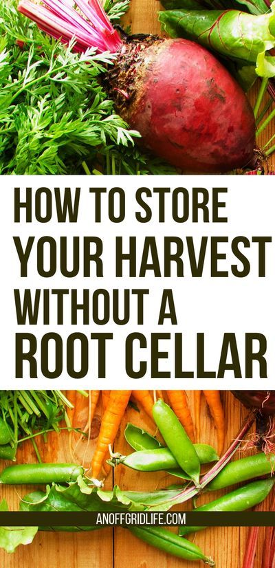 How to Store Your Harvest Without a Root Cellar | An Off ...