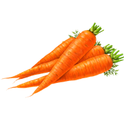 Pin By Freewebpsd On Vegetable Png Images Carrots Vegetables