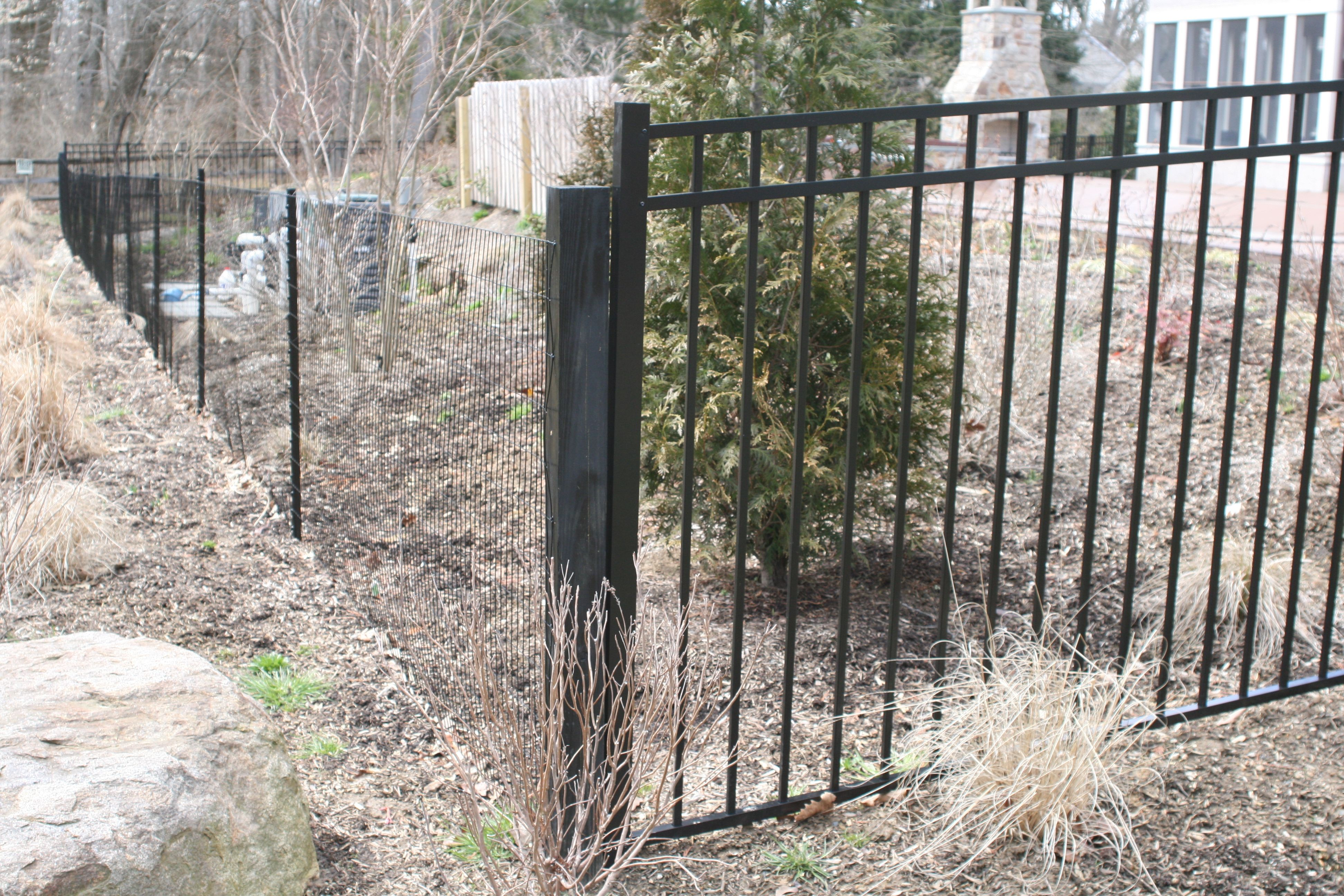 Painted black t-posts with black wire mesh   Fence Ideas   Pinterest ...