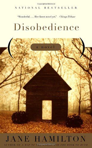 Disobedience: A Novel by Jane Hamilton; A wayward wife, an Oedipally obsessed e-mail snoop, a pint-sized Civil War reenactor, and a cheerfully oblivious cuckold comprise the Shaws of Chicago. Quirky characters in an un-quirky novel. It's sometimes difficult to determine who to root for, but these are fully-developed characters in a delicate story.