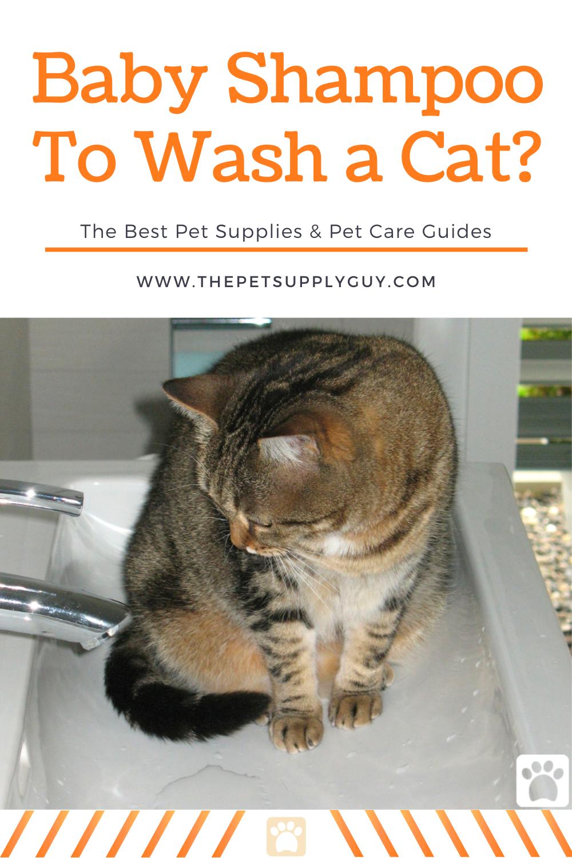 Cat Shampoo Vs Baby Shampoo In 2020 Cats Cat Care Cat Training