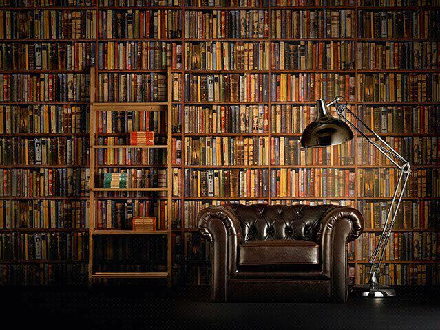 Wallpaper For The Home Pinterest Books Wallpaper And Interior