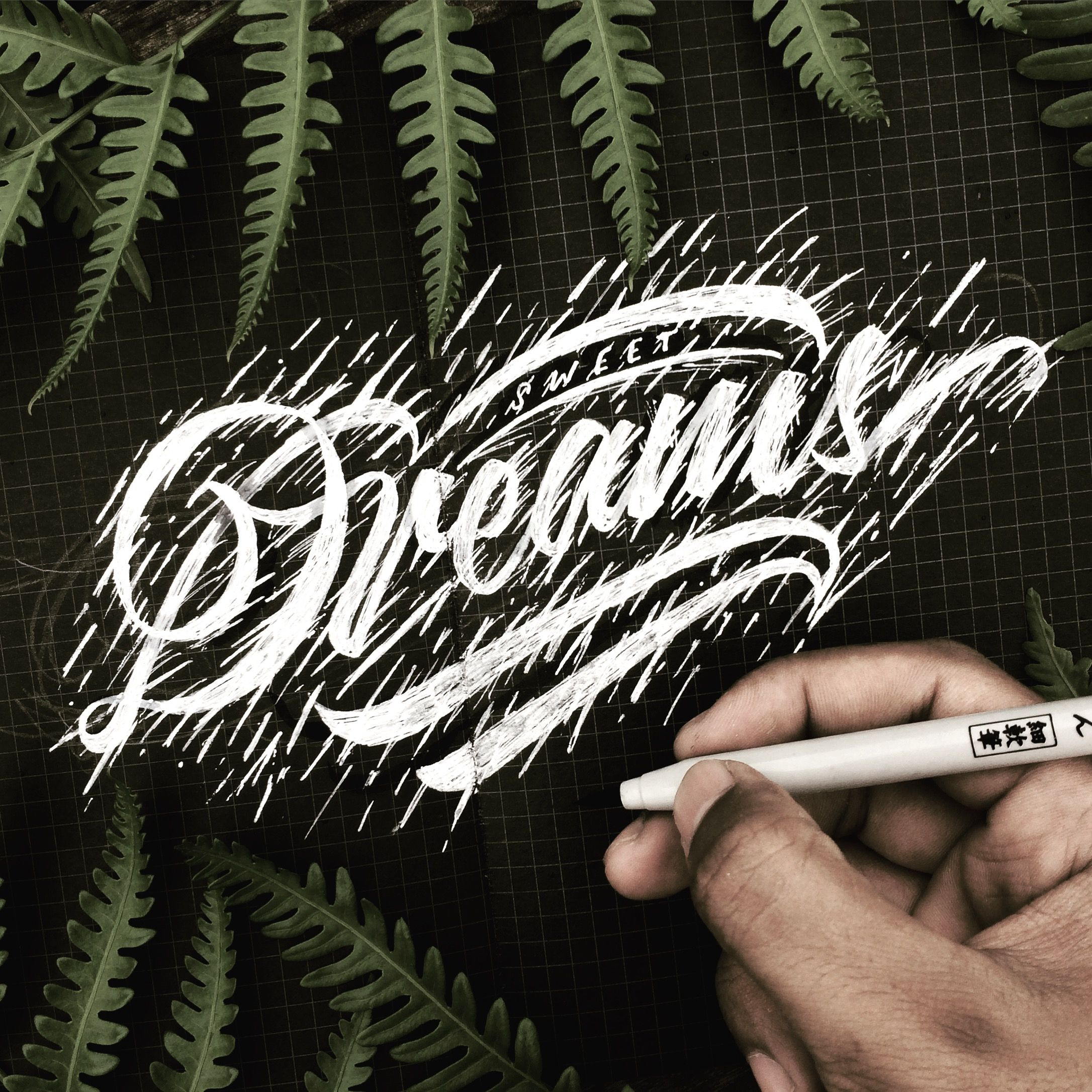 Sweet dreams 🌿🍃