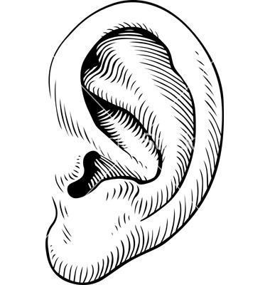 Human ears clipart black and white - photo#41