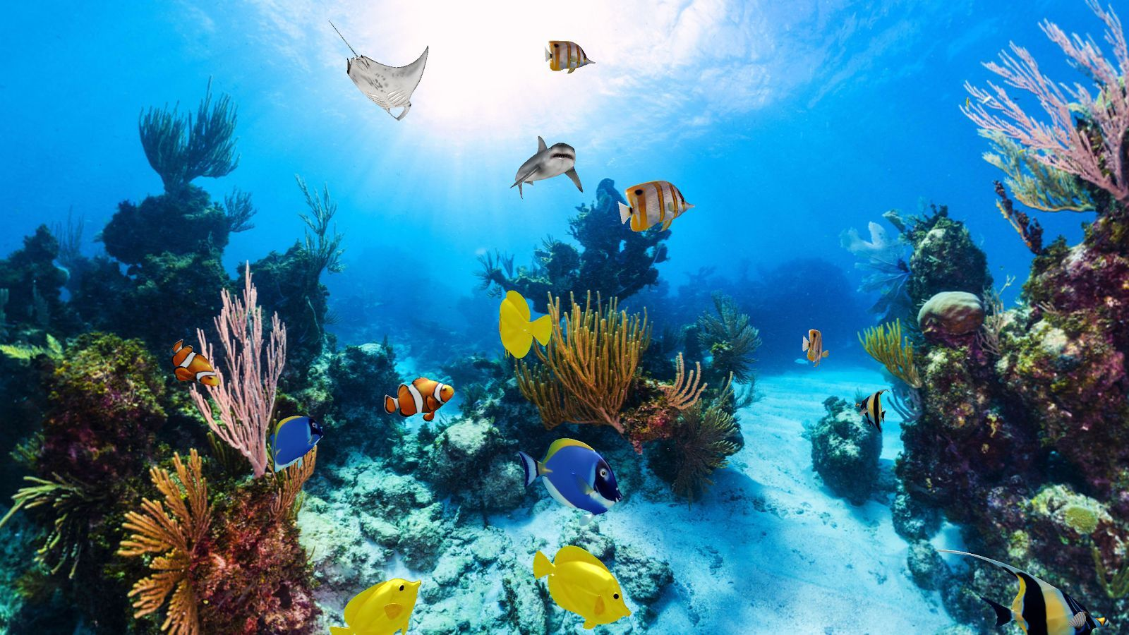 Download Trial Aquarium 360 Degree 3D Live Wallpaper Free for