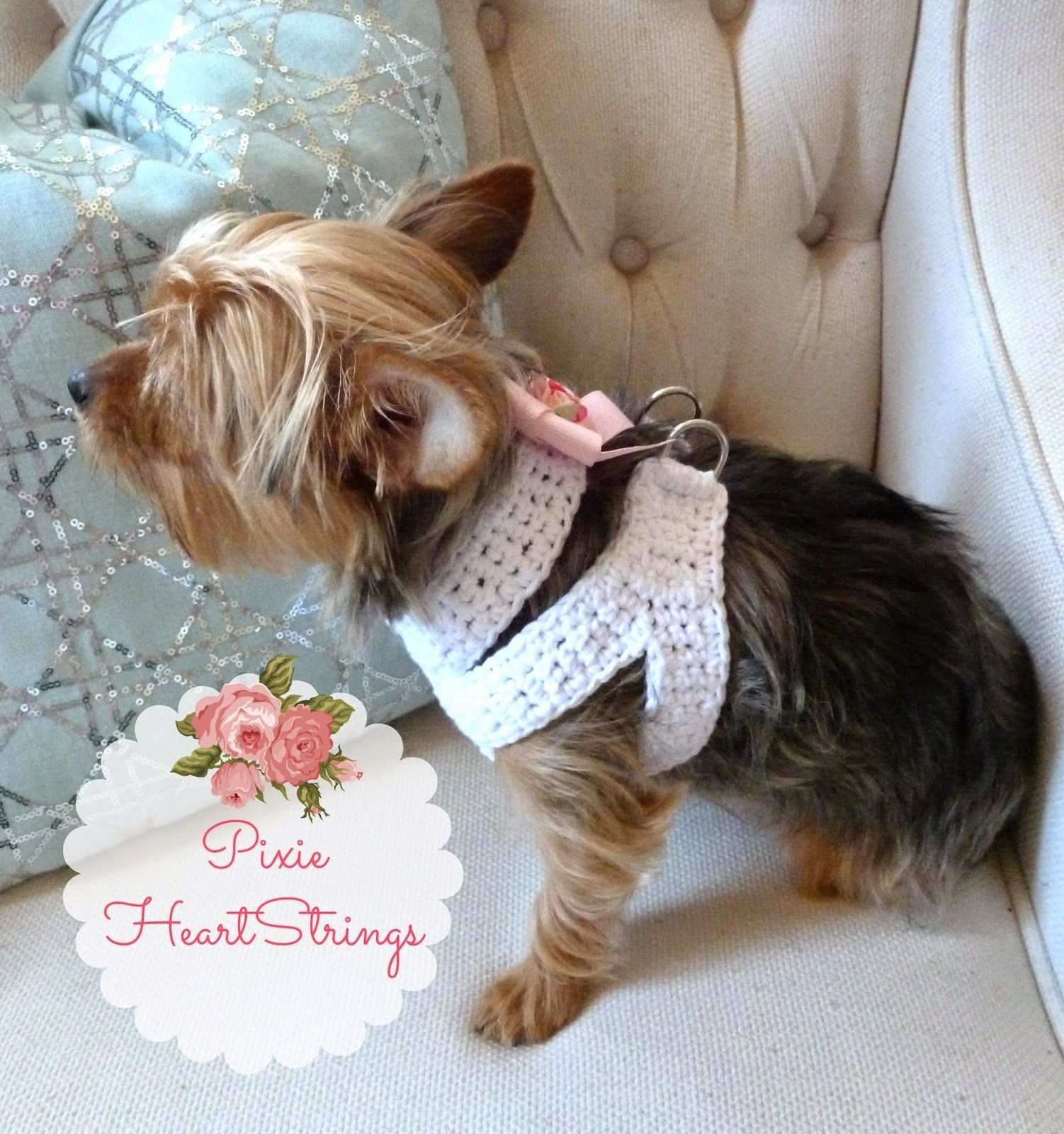 A crocheted dog harness for your tiny dog free pattern a crocheted dog harness for your tiny dog free pattern bankloansurffo Gallery
