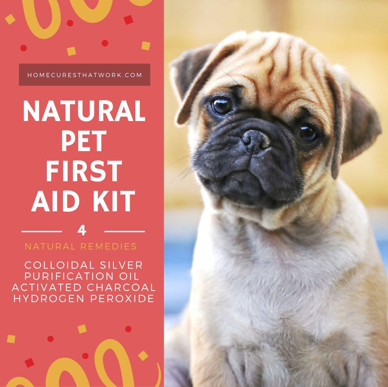 Natural Remedies For Healthy Pets Healthy Pets Cheap Pet Insurance Pet Insurance Reviews