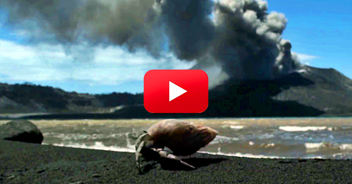 I Had Trouble Putting My Jaw Back on After Watching this Exploding Volcano! | The Rainforest Site Blog