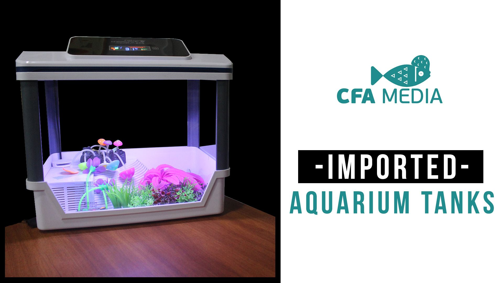 Kolathur Best Imported Aquarium Tanks And Turtle Tanks Stands And Other Food Products Are Available At This Place Vist Onc Turtle Tank Aquarium Turtle