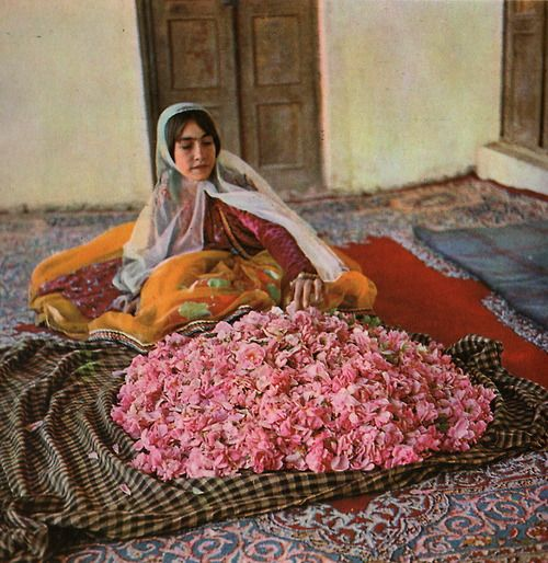 "Collection ""Connais-tu mon pays ?"", en Iran avec Reza, de Colette Nast, édition Hatier, 1963. Photos de Marie-Louise Creyghton."