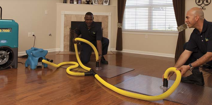 Structural Drying Services How to clean carpet, Water