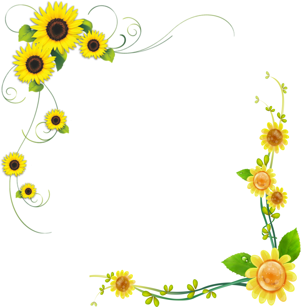 Sunflower Frame Sunflower Pictures Free Download Sunflower Clipart Sunflower Png Sunflower Drawing