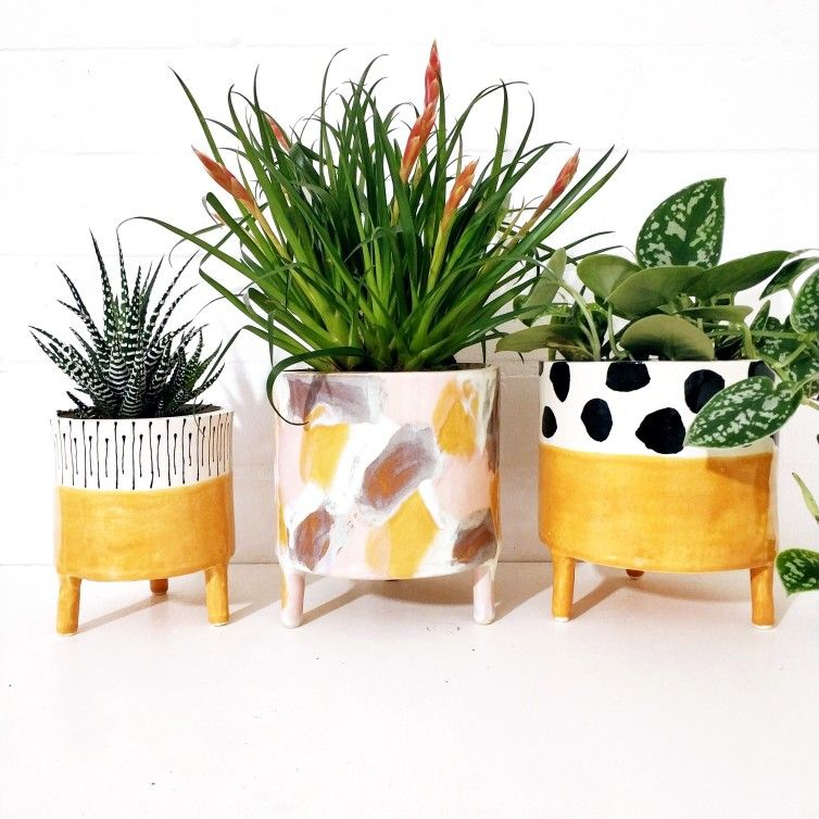 Pin By Anna Domme On Keramika Painted Plant Pots Bedroom Plants