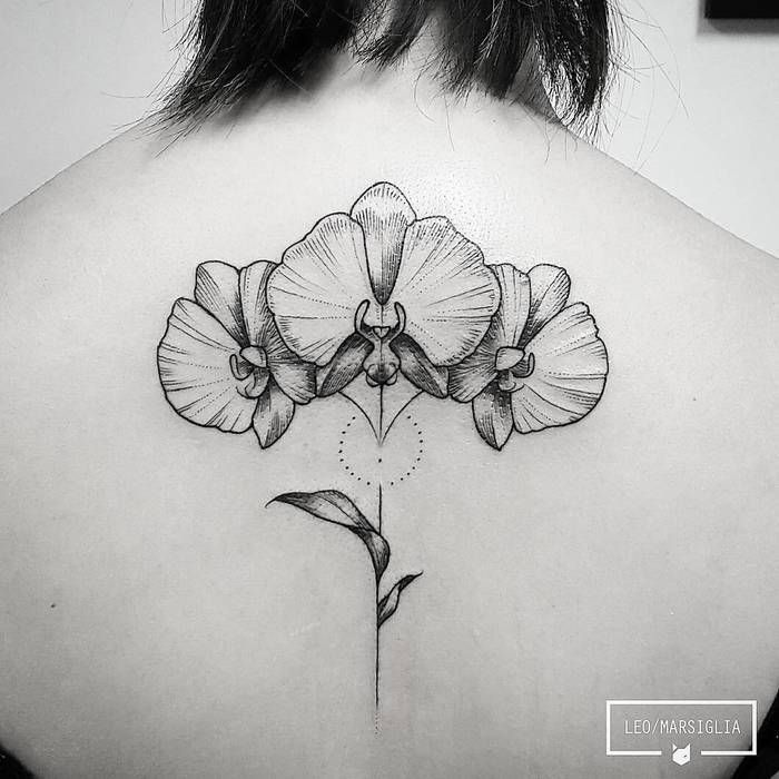 Black And Grey Orchid Flowers By Leo Marsiglia Orchid Tattoo Floral Tattoo Sleeve Orchid Flower Tattoos