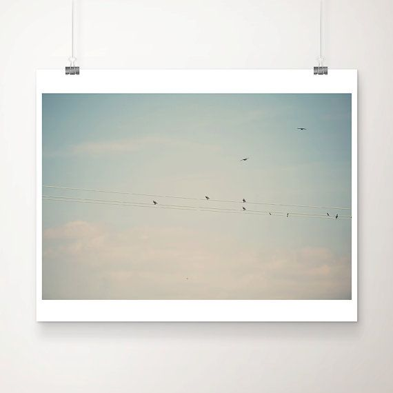bird photograph, animal photography, birds on wires, mint, green, pastel, color photography, wings, flying, clouds, nursery wall art