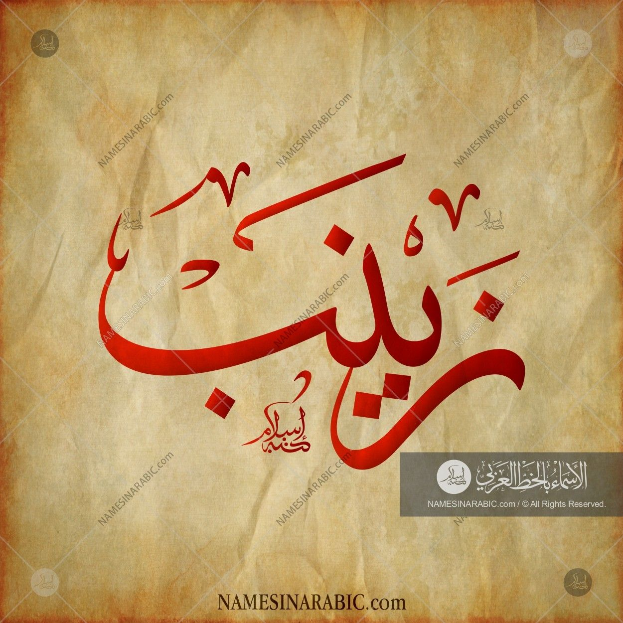 Zainab - زينب / Names in Arabic Calligraphy | Name# 1833
