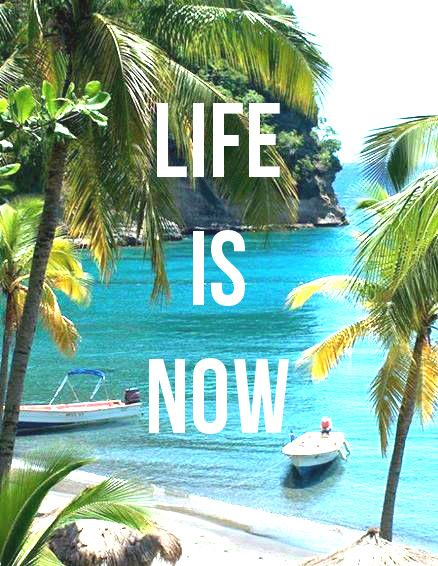 Life Is Now! Quotes, Tropical Island | Island Life ...