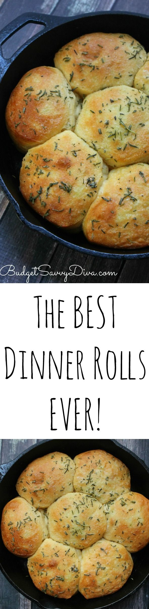 The BEST Dinner Rolls Ever Recipe - I will be making these rolls for Thanksgiving. Perfect Roll Recipe for The Holidays