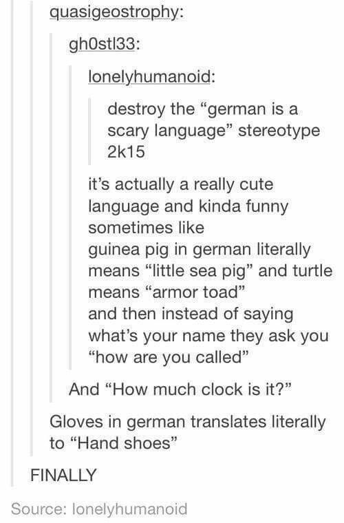"""German is one of my favorite languages // I think that it's perceived as a scary language because of Nazis and hella long words like """"Kugelschreiber"""" or """"Umwelterziehung."""""""