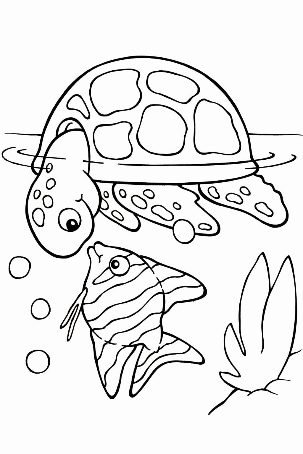 Dolphin And Turtle Coloring Pages - PeepsBurgh