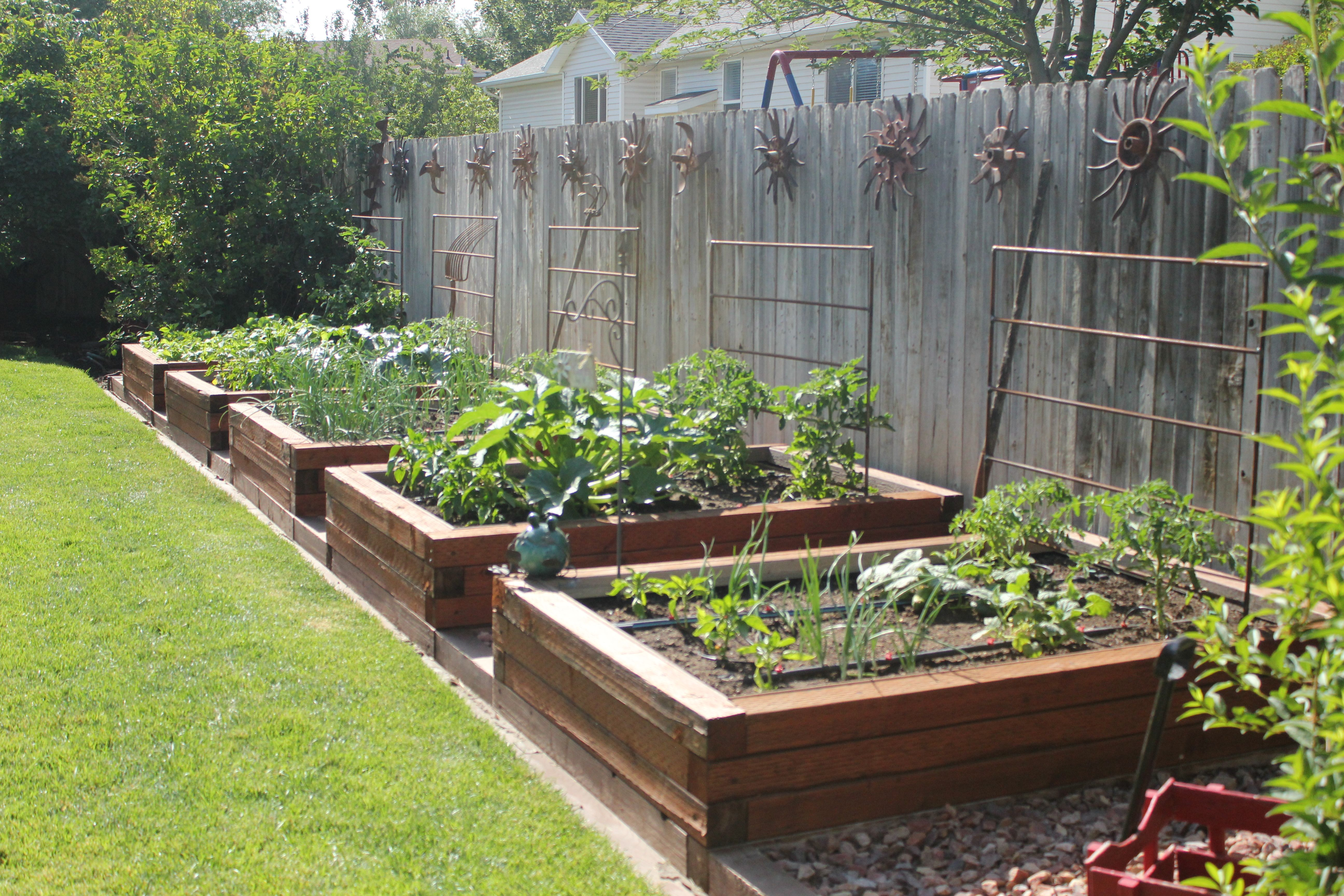 Beautiful Raised Beds for the vegetable garden. (From the