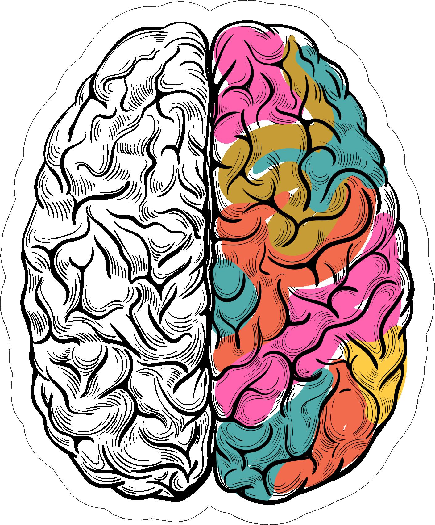 мебельная мозг картинки рисунки фото