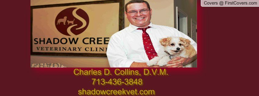 Welcome To Shadow Creek Veterinary Clinic Veterinary Clinic Pet Health Veterinary