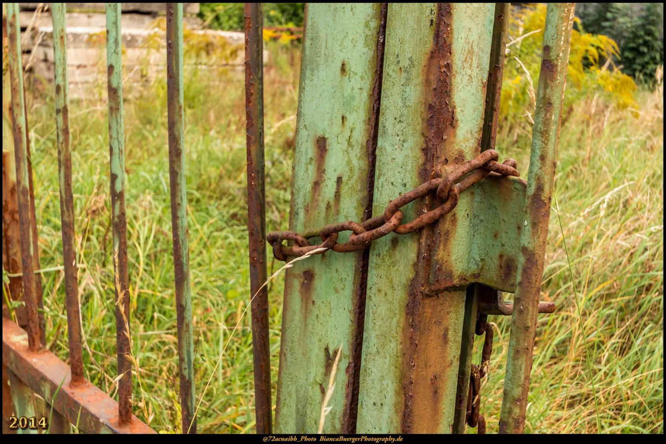 Der Zaun und die Kette #Malchow #Zaun #Kette #MecklenburgVorpommern ...