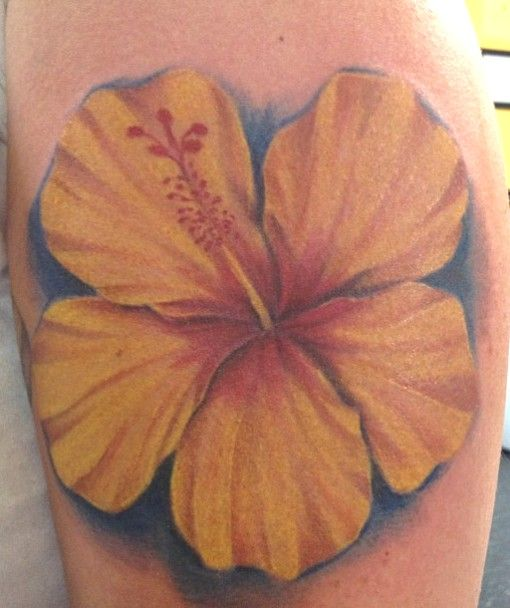 2f90655d1b7ea Yellow hibiscus (Hawai'i state flower) on dreamcatcher for Kevan. Hibiscus  Tattoo