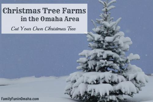 7 Delightful Christmas Tree Farms Near Omaha