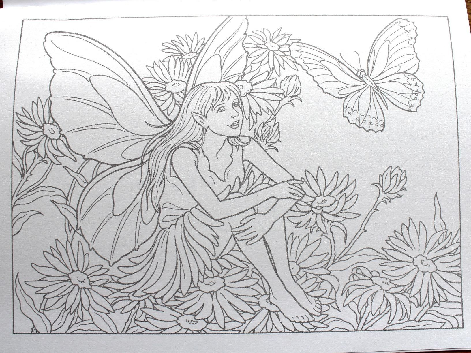 fairies to paint or color dover art coloring book darcy may