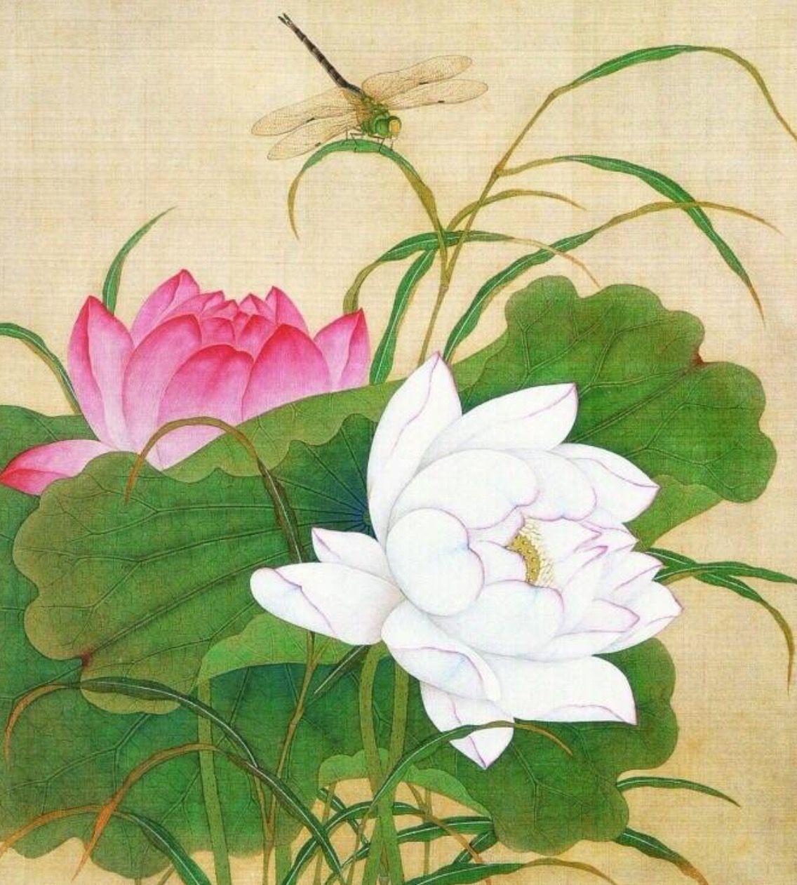 花鳥畫 painting おしゃれまとめの人気アイデア pinterest slava fokk 蓮の絵 水彩 花 蓮の花