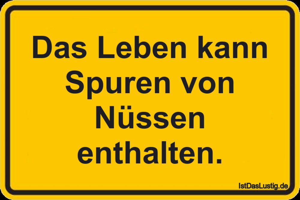 Das Leben kann Spuren von Nüssen enthalten. ... gefunden auf https://www.istdaslustig.de/spruch/530 #lustig #sprüche #fun #spass