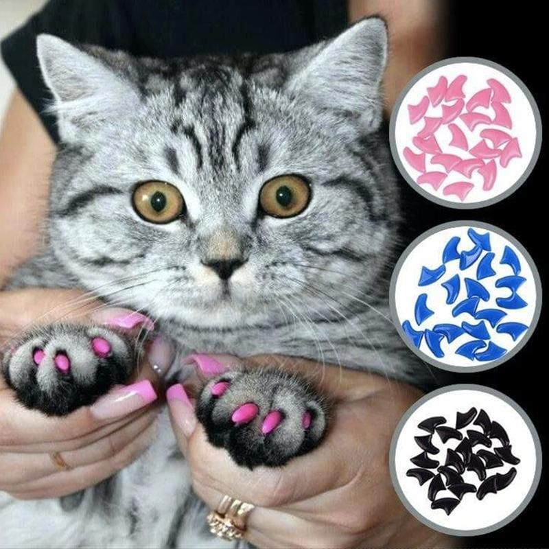Cat Dog Nail Caps Dog Nails Nail Caps Trim Cat Nails