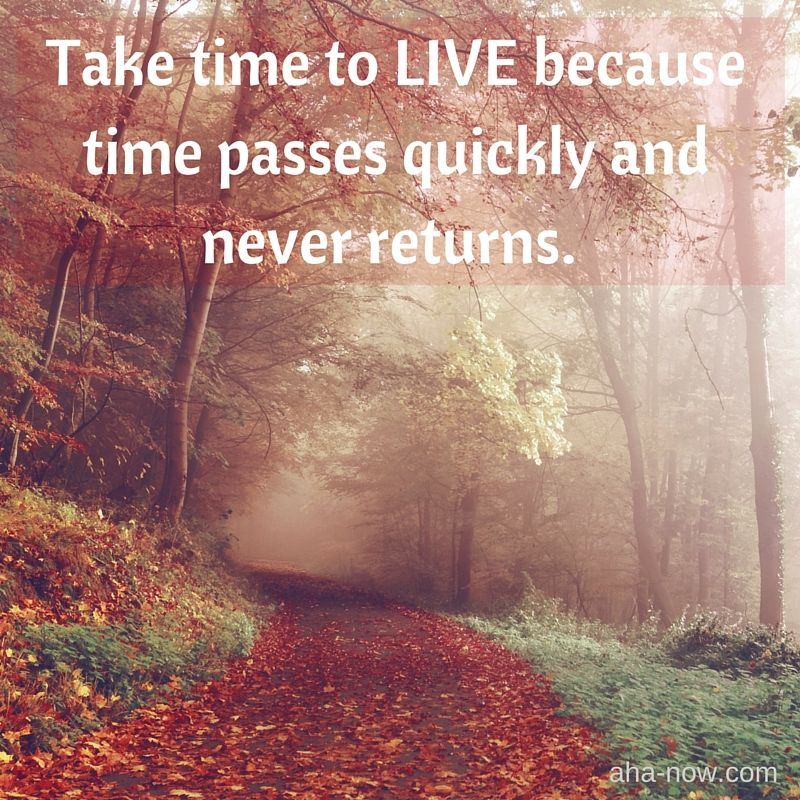 Take Time To Live Because Time Passes Quickly And Never Returns Inpirational Quotes Quotes Time To Live