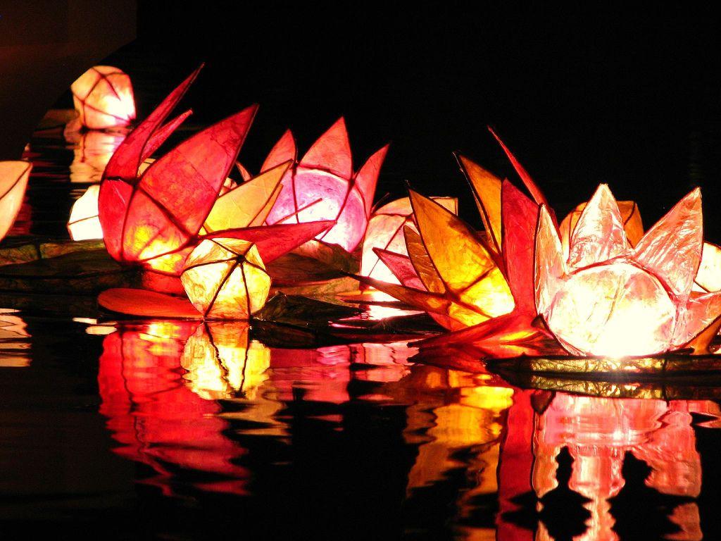 diwali pictures diwali celebration of light diwali lanterns diwali pictures diwali celebration of light diwali lanterns