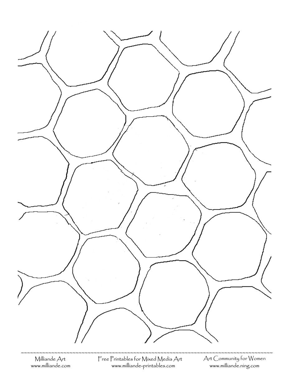 Honey Comb Picture Free Collage Sheet
