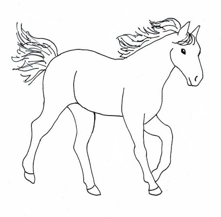 Lovely Coloring Pages Of Horses 65 Color Horses AZ Coloring