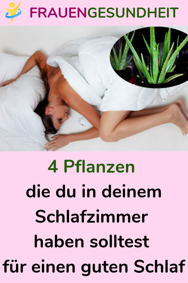 4 Pflanzen Die Du In Deinem Schlafzimmer Haben Solltest Fur Einen Guten Schlaf Schlafen Pflanzen Gesundheit