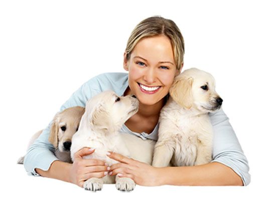 What are the key factors to consider while selecting a pet