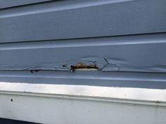 Clapboard Siding Repair 101 How To Replace That Rotted Siding With Some Good Wood Siding Repair Clapboard Siding Wood Siding Exterior