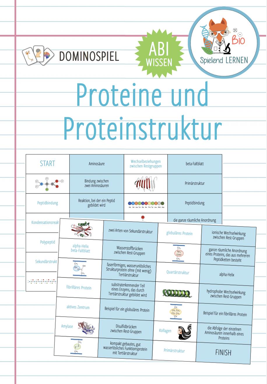 Proteine Und Proteinstruktur Domino Spiel Abitur Unterrichtsmaterial Im Fach Chemie In 2020 Domino Spiele Biologiestunden Biologie Studium