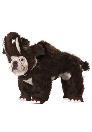 Dinosaur Costumes For Dogs Pet Halloween Costumes Dog Halloween