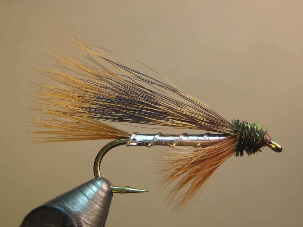 how to cast a fly rod step by step