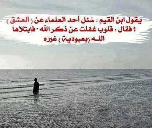 من افضل اقوال ابن القيم الجوزيه بالصور Islamic Quotes Arabic Love Quotes Arabic Quotes