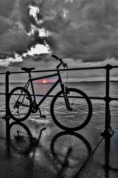 Obsession Bicycle Color Splash Photography Bike Photography